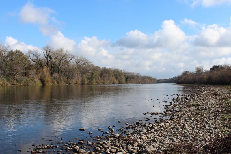 Bureau of Reclamation Will Cut American River Flows to 500 cfs