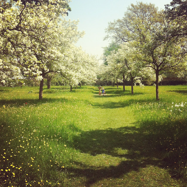 stately home, blossom, apple trees, Hardwick Hall, Bess of Hardwick, Elizabethan