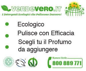pulizia detergenti ecologici