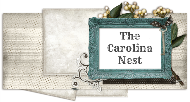 The Carolina Nest