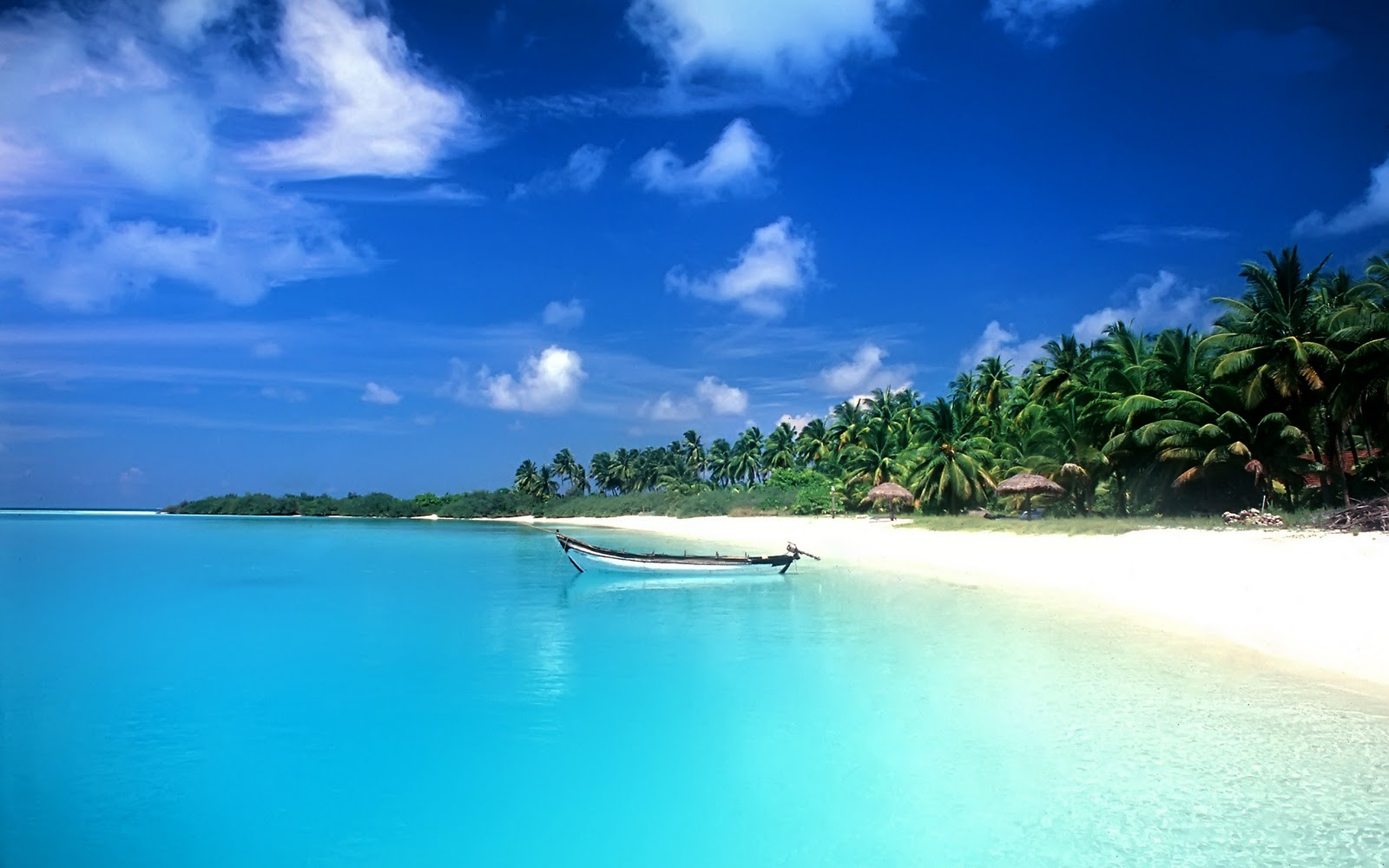 http://1.bp.blogspot.com/-kKQ5sbCSdK8/T8X1fOSd1sI/AAAAAAAAAco/V3WtznCuBz8/s1600/Beach+Wallpaper+Hd+Image.jpg