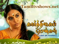 Karthigai Pengal 03-06-2013 - Sun TV Serial