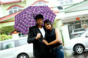 Telugu movie Love In Malaysia Photos Gallery-thumbnail-6