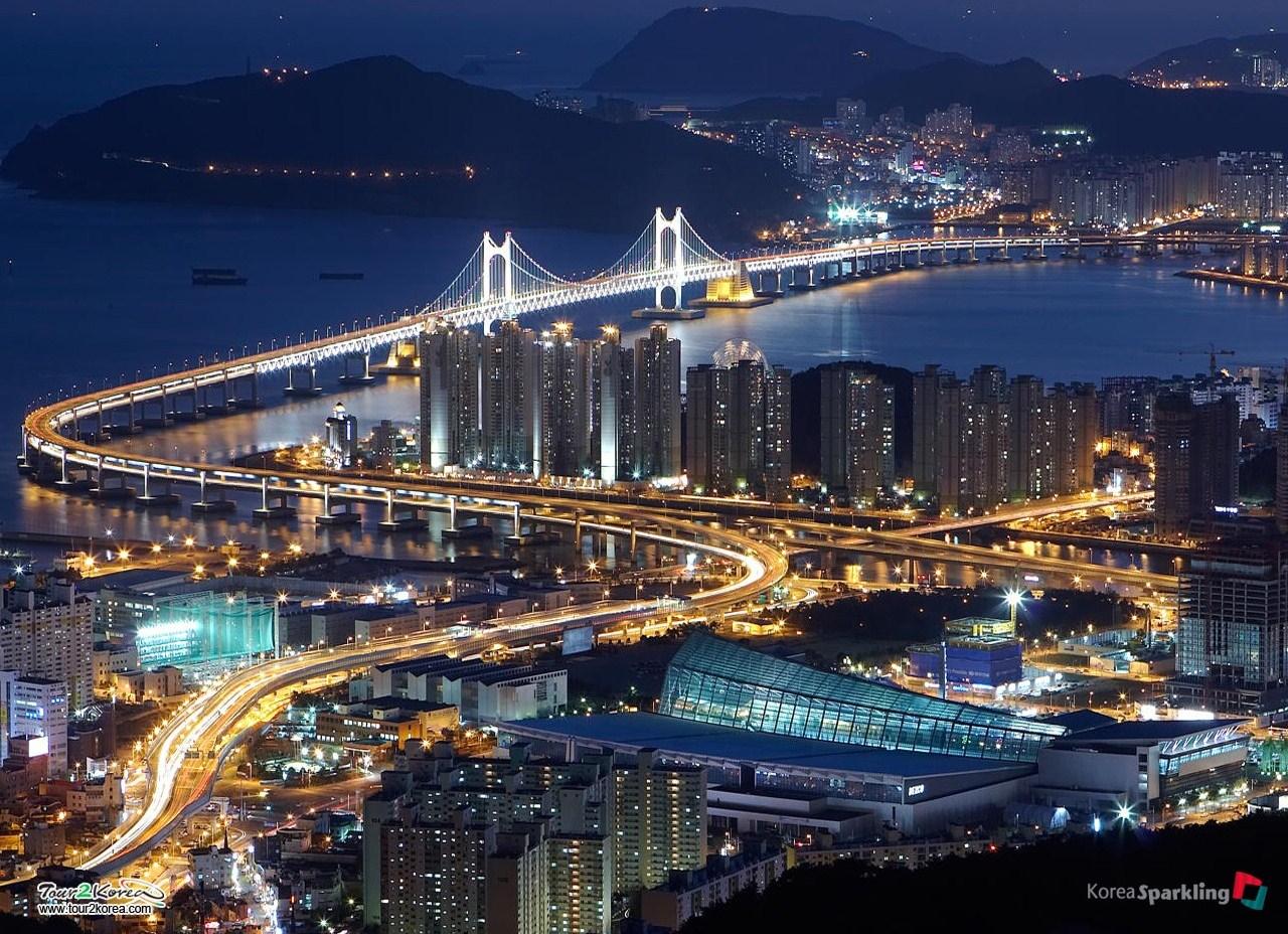 trip to korea essay