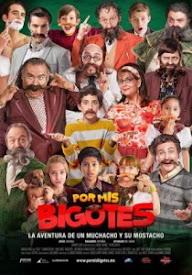Por mis bigotes (2015)