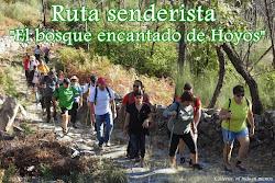 RUTA SENDERISTA EL BOSQUE ENCANTADO