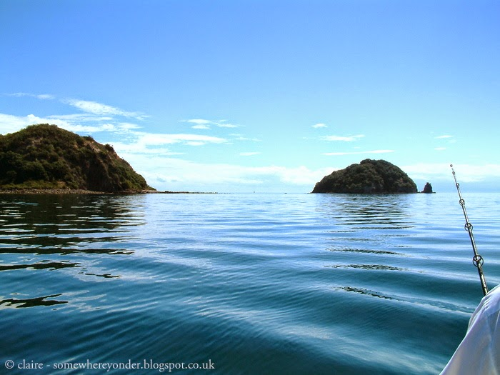 fishing in the Coromandel Peninsula, New Zealand