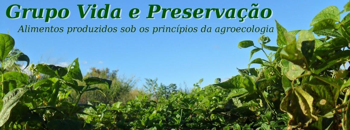 Grupo Vida e Preservação