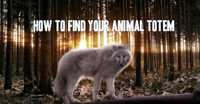 White Wolf Finding Your Animal Totem Native American Teaching