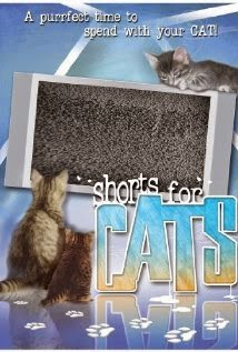 Shorts for Cats (2008)