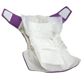 Grovia Cloth Diaper