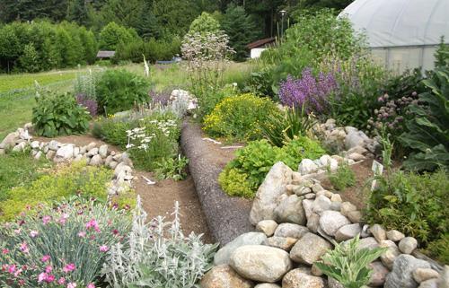 Spazio noi primavera con plantas arom ticas Plantas jardin mediterraneo