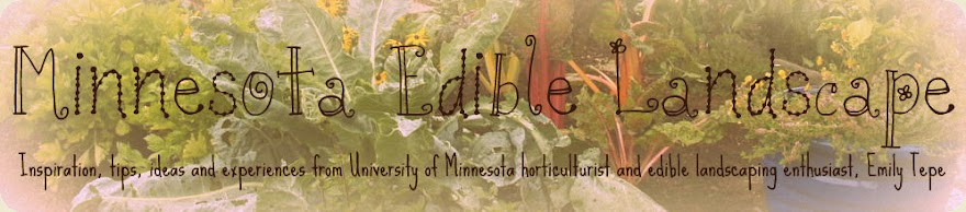 Edible Landscaping at the University of Minnesota