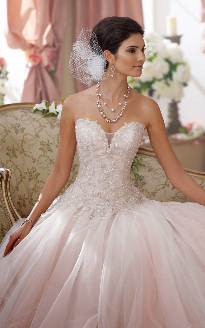 Pink Wedding Dresses David S Bridal : Wedding dress david tutera for mon cheri fall sitting