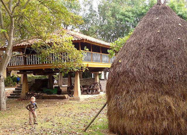 Hórreo y vara de hierba en Pueblo de Asturias