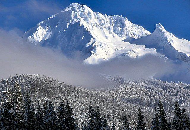 Twilighters Dream Oregon In Winter