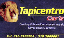 TAPICENTRO CARS 318 700 9001