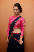 Diksha panth sizzling in saree-thumbnail-33
