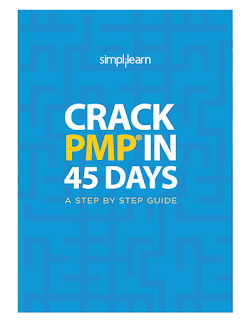 Crack PMP in 45 Days - A Step by Step Guide