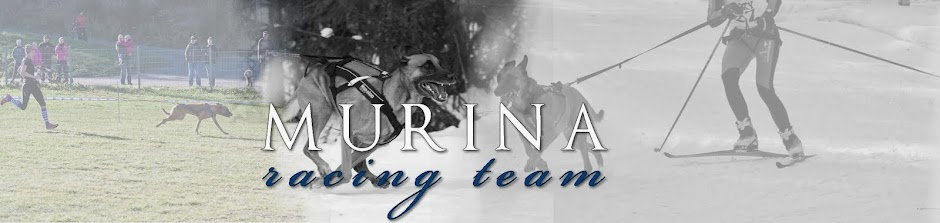 Murina Racing Team