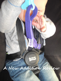 Teddy Tug, A New Addition Review, Blog
