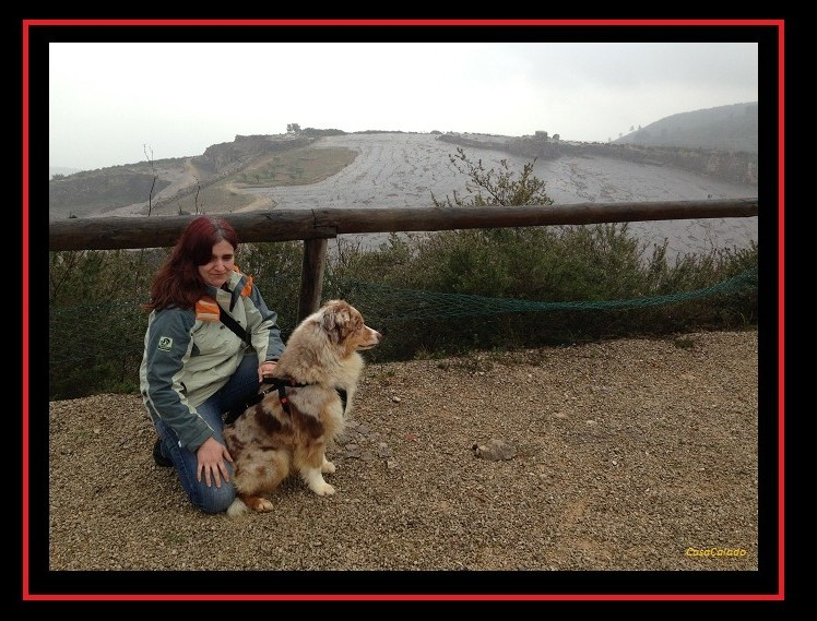 Australian Shepherd at Dinosaur Footprints in Serra de Aires
