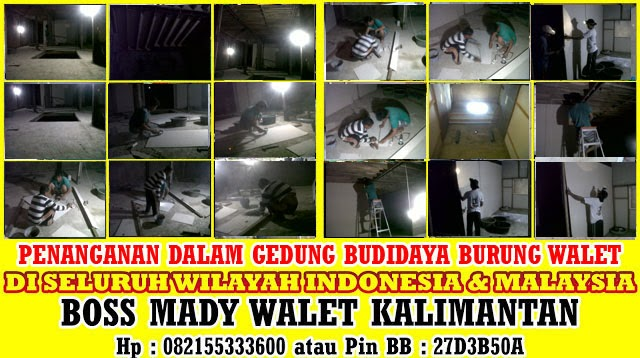 http://suarapanggildaninapburungwalet.blogspot.com/