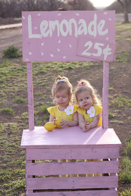 diy lemonade stand out of pallets