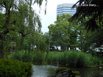 Serene lake and trees at Hibiya Garden - Tokyo, Japan