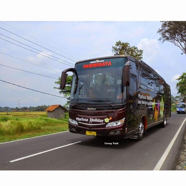Hasil gambar untuk bus indonesia