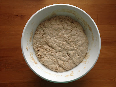 risen wheat bread dough