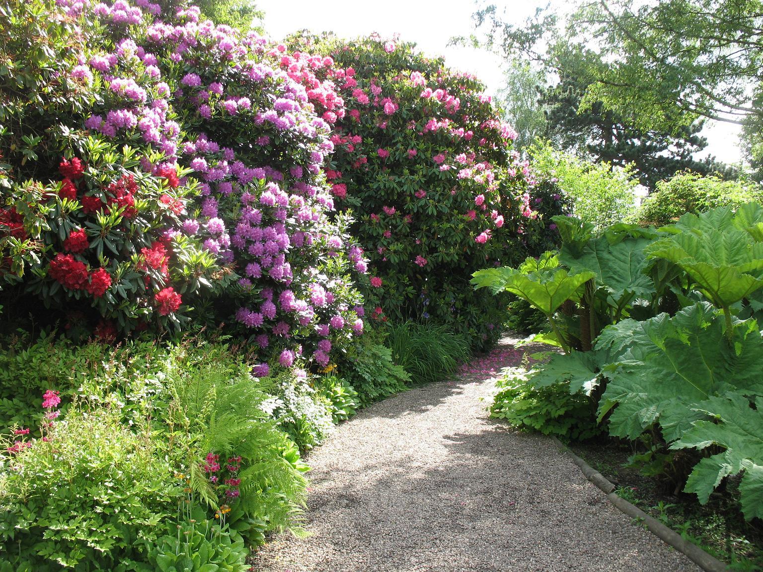 Le blog de parcs et jardins de l 39 oise voyage en angleterre le jardin botanique de birmingham for Plante et jardins