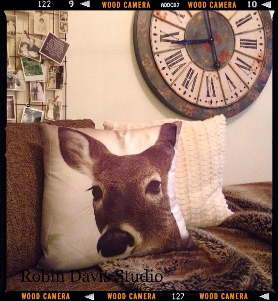 Photography Pillows | Robin Davis Studio