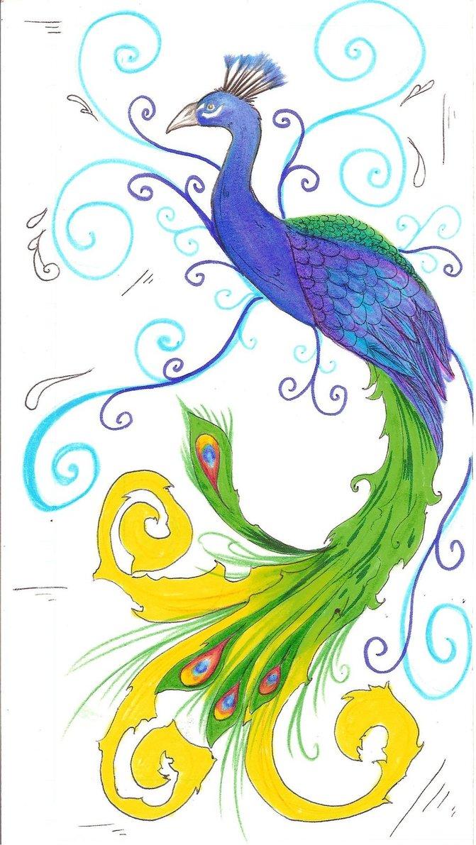 Simple peacock drawings - photo#2