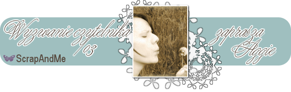 http://blogscrapandme.blogspot.com/2014/06/wyzwanie-czytelnika-03-aggie.html