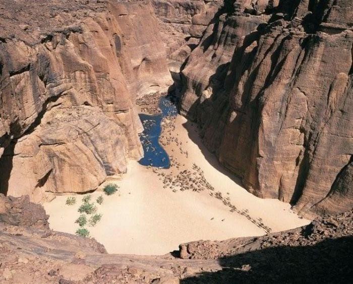 Этот прекрасный мир (Общение на разные темы) - Страница 9 Oasis_in_the_desert_03