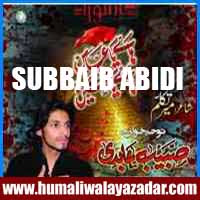 http://ishqehaider.blogspot.com/2013/11/subbaib-abidi-nohay-2014.html