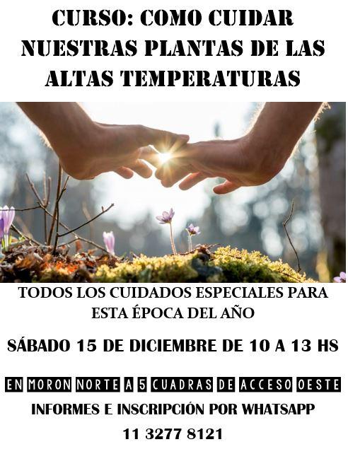 SÁBADO 15 DE DICIEMBRE: COMO PROTEGER NUESTRAS PLANTAS DE LAS ALTAS TEMPERATURAS