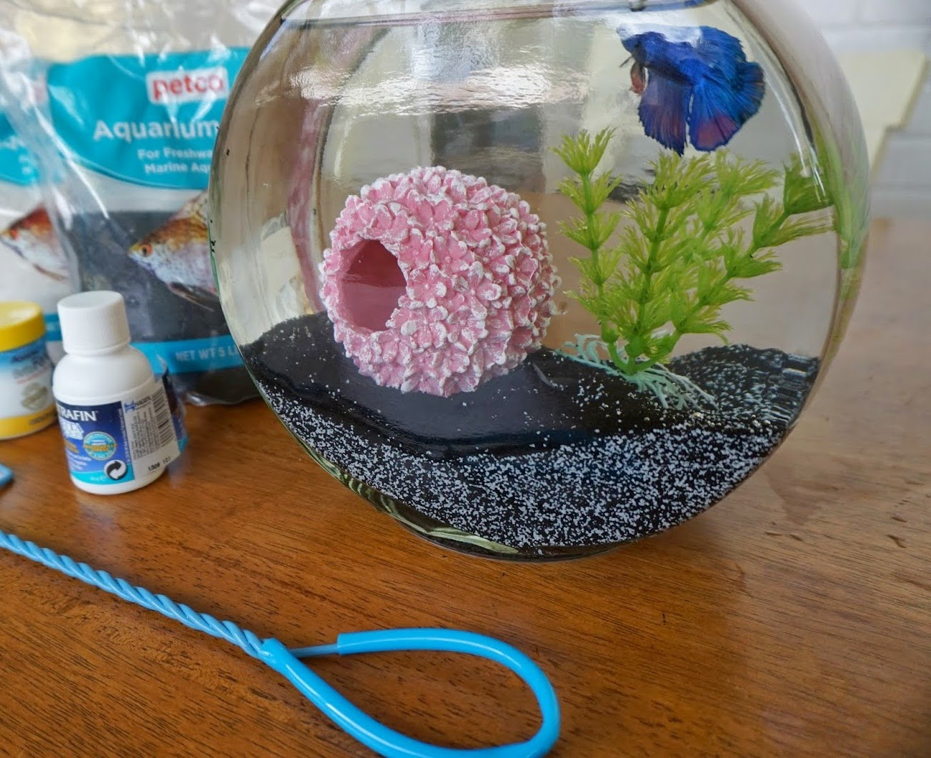 Decor puzzle for Fish bowl ideas