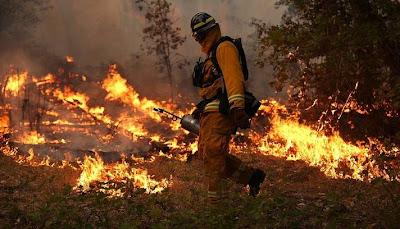Chegam a quase vinte e dois mil hectares de área queimada em parque florestal na califórnia, EUA
