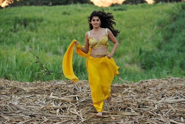 tapsee new spicy saree in mogudu hot images