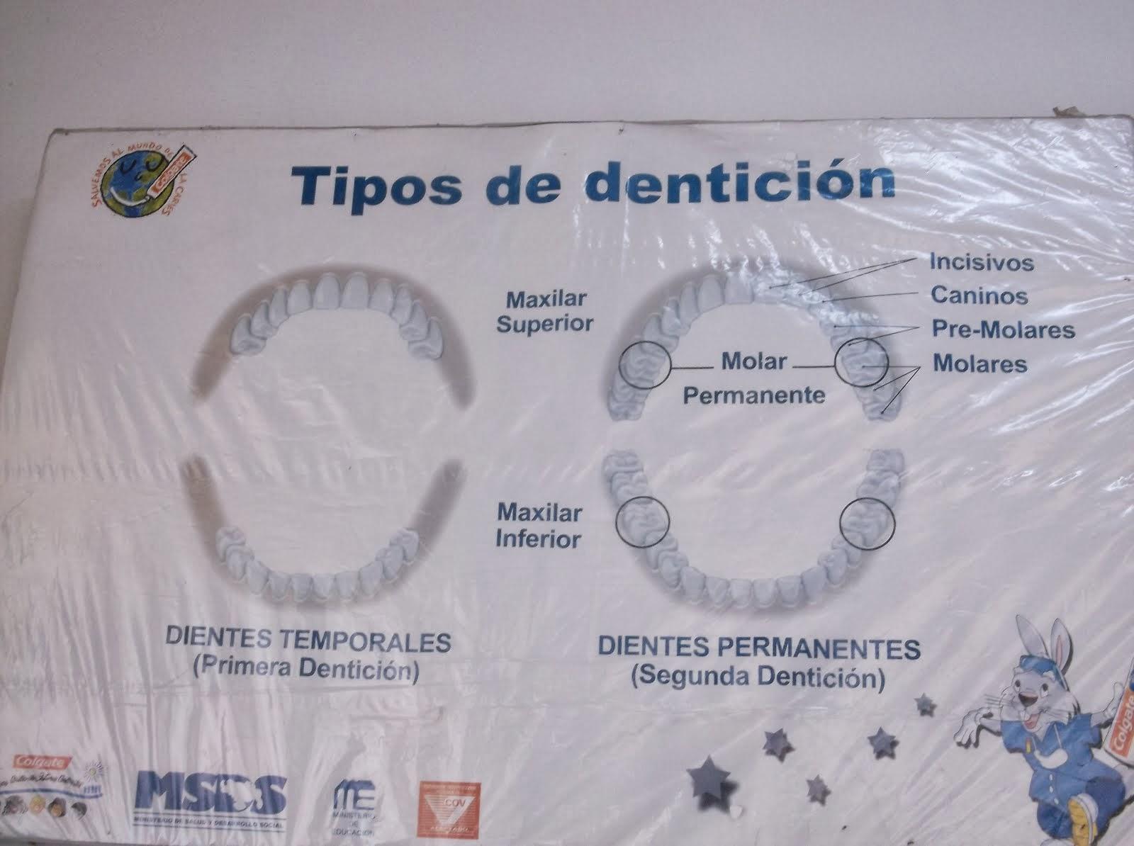 Lámina Para Charlas en la Escuela Ciudad de Acarigua.