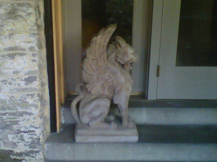Lex, my winged lion