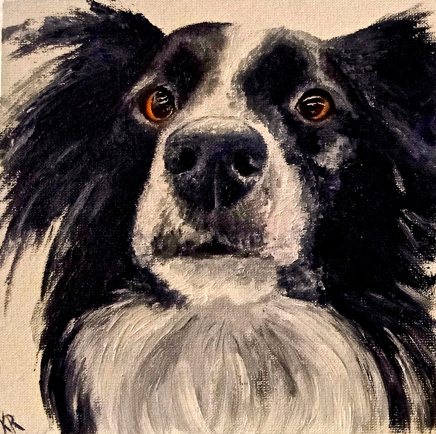 Portrait of a dog in oils, a collie cross, mixing chromatic blacks, a pet portrait by karen