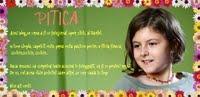 Pitica