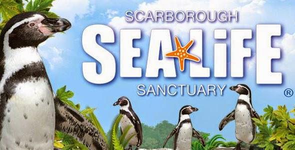 Scarborough Sealife Review