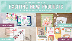2017- 2018 Stampin' Up! Catalogue