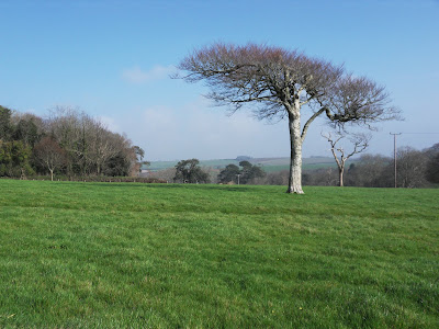 Menabilly estate Cornwall
