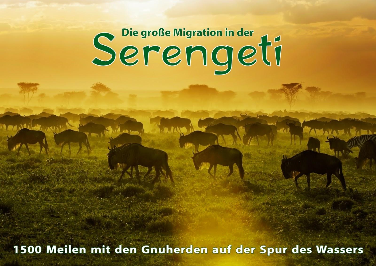 DIE GROSSE MIGRATION DER SERENGETI. Kalender von Uwe Skrzypczak