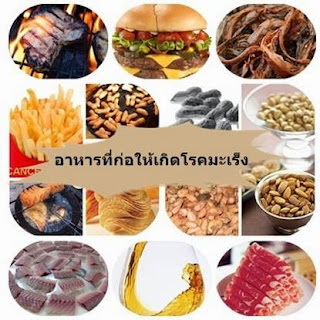อาหารที่ก่อให้เกิด โรคมะเร็ง